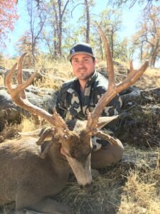 Mossback California Mule Deer